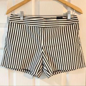 Express Dress Shorts - TAGS ON
